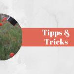 Retroadapter für Makroaufnahmen – 7 Tipps und Tricks